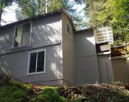 17000 Old Monte Rio Road, Guerneville image