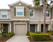 12719 Lexington Ridge St, Riverview image