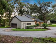 267 Wood Lake Drive, Maitland image