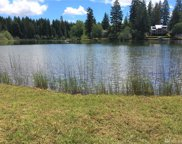 5670 E Mason Lake Dr W, Grapeview image