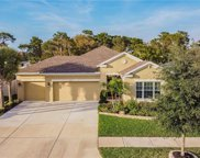 17512 Bright Wheat Drive, Lithia image