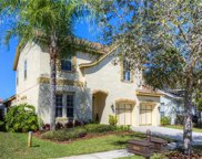11629 Meridian Point Drive, Tampa image
