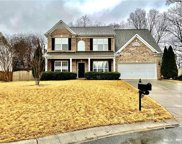 951 Laurel Meadow  Drive, Fort Mill image