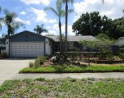 15914 Crying Wind Drive, Tampa image