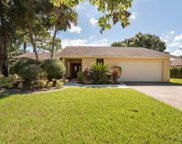 13917 Middle Park Drive, Tampa image