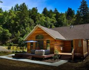 15230 Armstrong Woods Road, Guerneville image