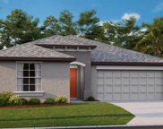 5453 Rainwood Meadows Drive, Apollo Beach image