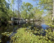 55 BLACK FEATHER LN, St Augustine image