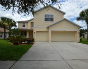 11923 Autumn Creek Drive, Riverview image