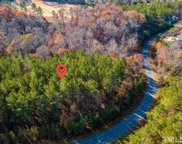 614 Berry Patch Lane Unit #lot 713, Pittsboro image