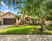 3813 Golden Feather Way, Kissimmee image