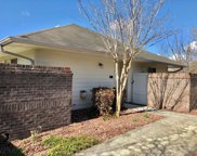 925 Summerlin Falls Court, Wilmington image