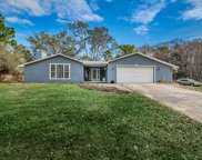 11200 Knotty Pine Drive, New Port Richey image