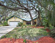 1120 Knollwood Drive, Safety Harbor image