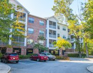1755 Central Park Road Unit #6206, Charleston image