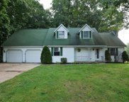 15211 Canary Drive, Grand Haven image