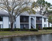1179 Pine Ridge Circle W Unit B2, Tarpon Springs image