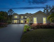 1585 GREEN MOSS LN, Orange Park image