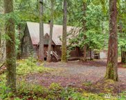 142 Silver Springs - USFS, Greenwater image
