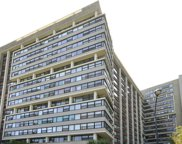 3410 North Lake Shore Drive Unit 15LM, Chicago image