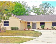 15704 Woodshed Place, Tampa image