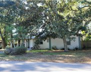 15815 Tower View Drive, Clermont image
