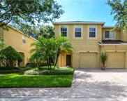 10545 Shady Falls Court, Riverview image