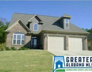125 Oak Leaf Cir, Pell City image
