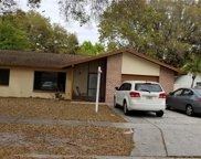 2130 Briar Way Drive, Clearwater image