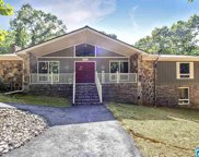 4954 Smith Trl, Pell City image
