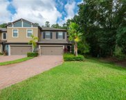 17259 Old Tobacco Road, Lutz image