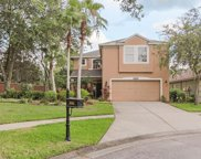 10202 Woodford Bridge Street, Tampa image