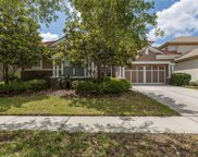 11632 Bristol Chase Drive, Tampa image