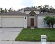 31304 Wrencrest Drive, Wesley Chapel image