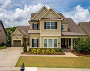 313  Newington Court, Fort Mill image