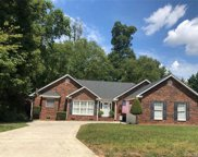 1474  White Hall Place, Gastonia image