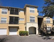 5125 Palm Springs Boulevard Unit 8306, Tampa image
