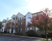 1175 Mill Crossing Unit #300, St Louis image