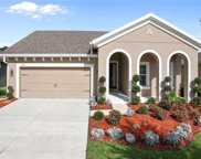 6253 Hawk Grove Court, Wesley Chapel image