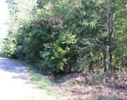 Lot #82 Polly Mountain Road, Madisonville image