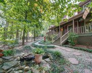 10710 Bristlecone  Court, Mint Hill image