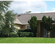 14738 Peppermill Trail, Clermont image
