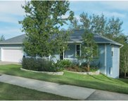 818 Forestwood Drive, Minneola image