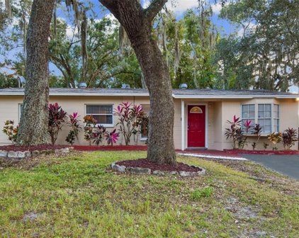 7005 Tamarack Drive, Tampa