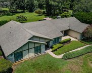 6355 Governors Drive, New Port Richey image