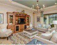 10222 Pebble Pointe Ln, Bonita Springs image