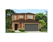 29266 Perilli Place, Wesley Chapel image