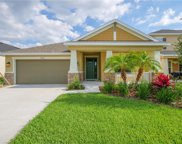 8014 Marbella Creek Avenue, Tampa image