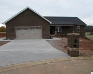 1519 Rosewood Dr, Sevierville image