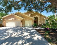 10334 Palmbrooke Terrace, Lakewood Ranch image